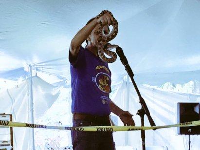 rattle snake festival
